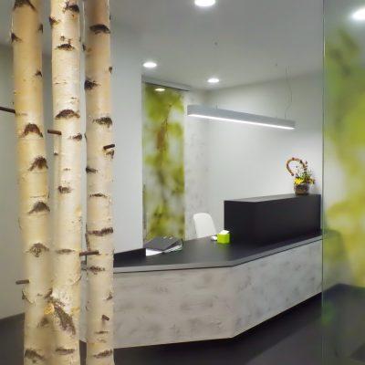 Empfang/ Entrance- Reception